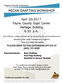 Pecan Grafting Workshop